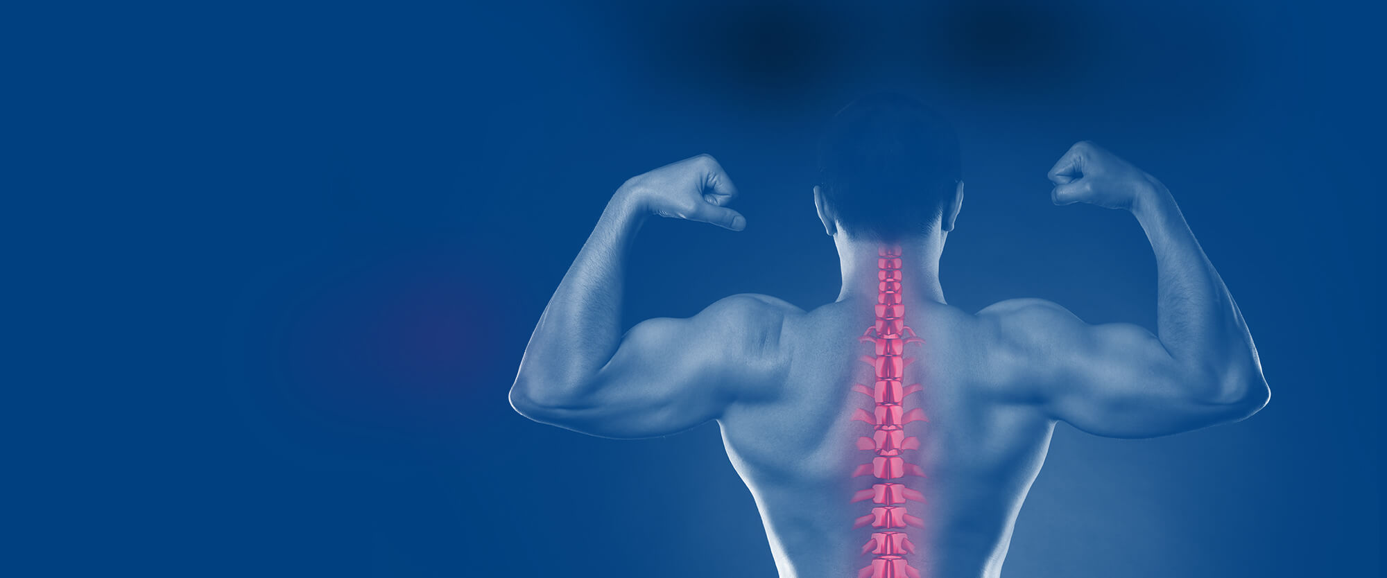 A man's back while flexing his muscles with his spinal vertebra highlighted in pink